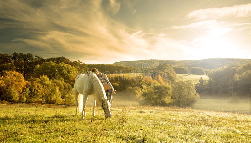 Beautiful sensual women with white horse stock photography