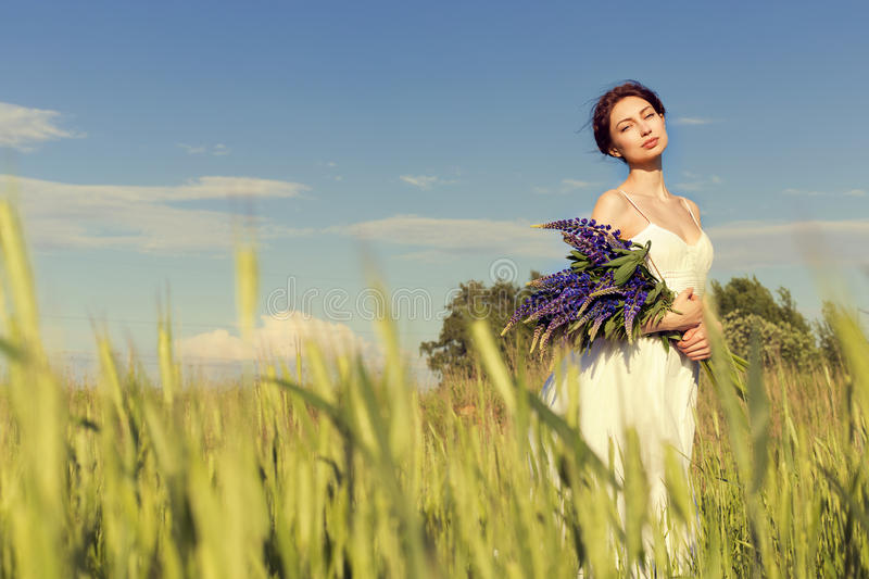 Beautiful girl with dark hair in white sundress with a bouquet of flowers lupine walks on the field with rye on a sun royalty free stock image