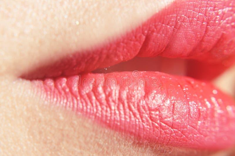 Beautiful lips. pink big lips - close-up. Close-up perfect natural lip makeup beautiful female mouth. Plump full lips. royalty free stock images