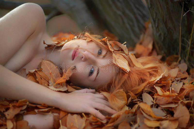 Beautiful lovely young girl lying on golden autumn leaves, covered with colored leaves, with friendly smile in h stock photography