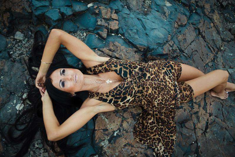 Beautiful sexy woman posing in Leopard print dress on dark background royalty free stock image