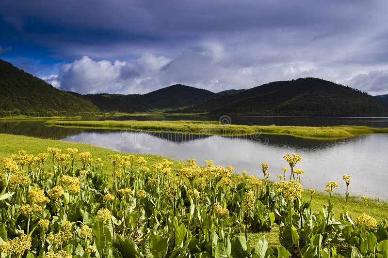 Beautiful Shangri-La lake. This is a picture of a very beautiful lake in Shangri-La royalty free stock images
