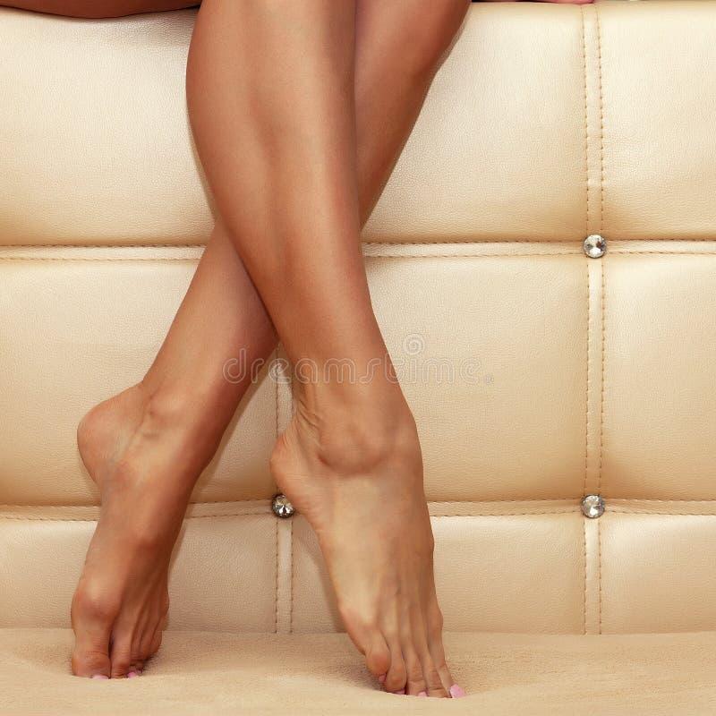 Beautiful shapely female legs. On a beige background luxury stock photo
