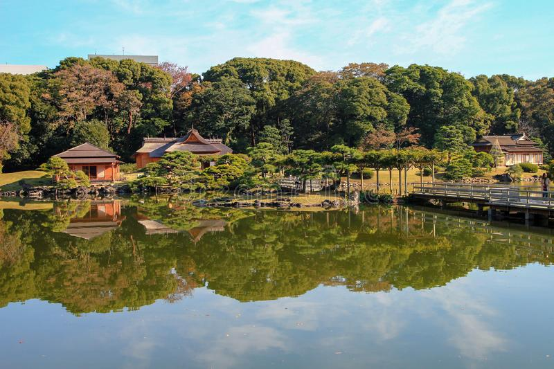 Beautiful Shinjuku park in Tokyo, Japan. Peaceful, quiet garden Shinjuku park full of beautiful trees, buildings and ponds in the middle of busy city Tokyo stock photo
