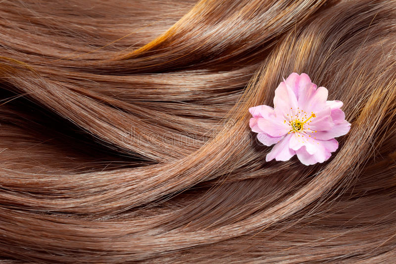 Beautiful shiny hair texture with a flower royalty free stock photos