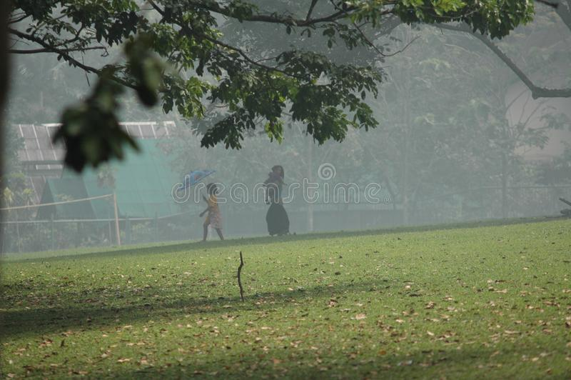Beautiful shot of a daughter and mother walking on a grassy field in fog near trees royalty free stock image
