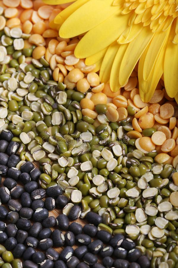 Lentils. Beautiful shot of different types of lentils in layers royalty free stock image
