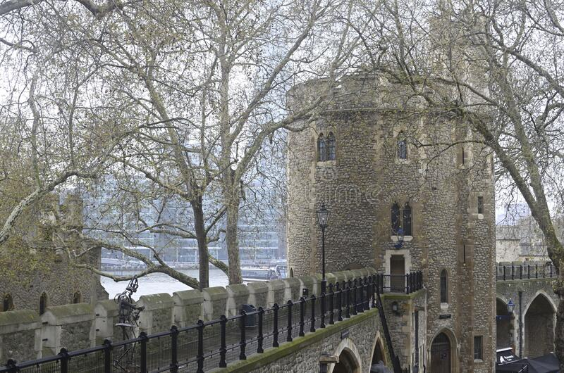 Beautiful shot of dry trees covering the Tower of London in England, United Kingdom. A beautiful shot of dry trees covering the Tower of London in England royalty free stock images