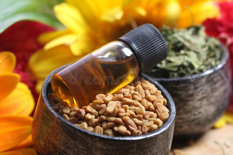 Fenugreek seeds and oil. Beautiful shot of fenugreek seeds with oil bottle royalty free stock photo