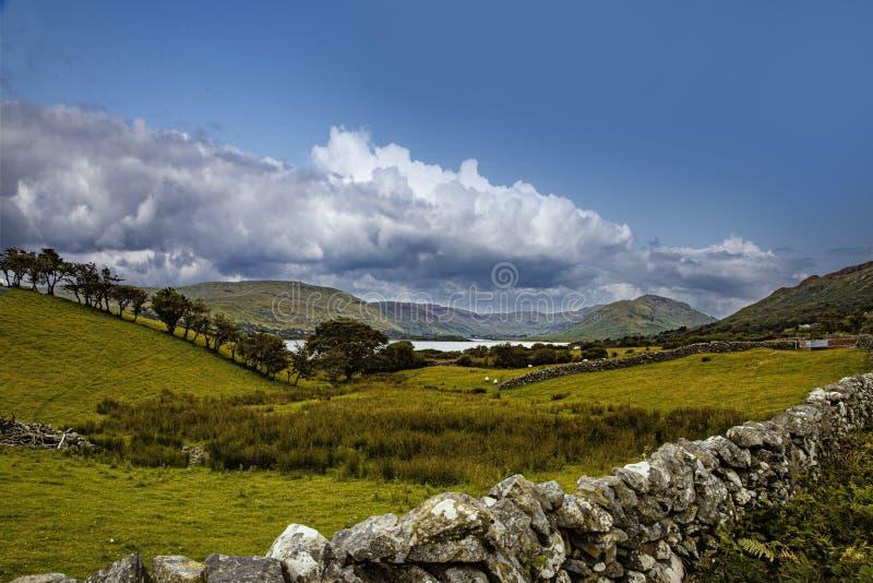 Beautiful shot of the field near the Lough Nafooey lake near Finny in County Mayo, Ireland. A beautiful shot of the field near the Lough Nafooey lake near Finny royalty free stock image