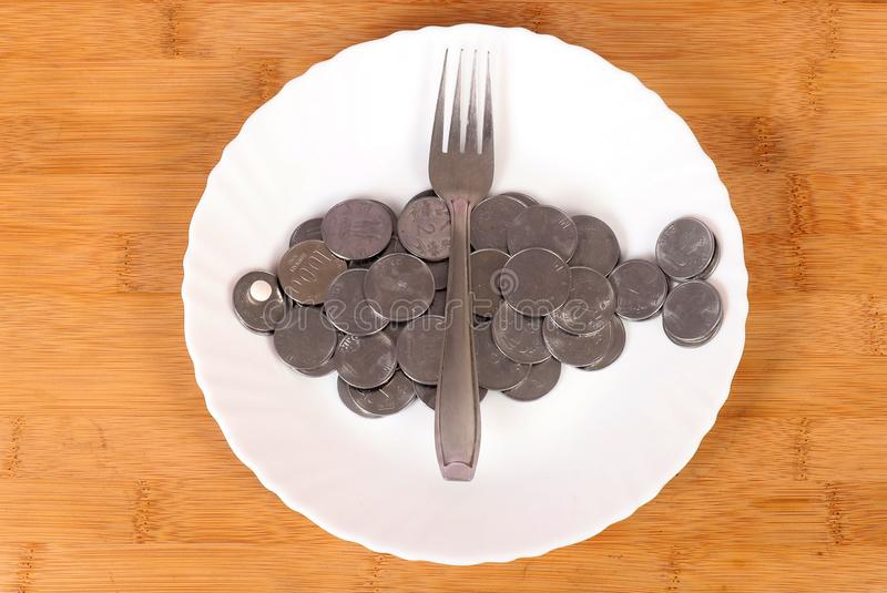 Metal coins. Beautiful shot of metal coins in form of fish in plate stock photo
