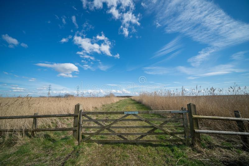 Beautiful shot of a path in the wild field isolated by a wooden fence under the bright blue sky stock image