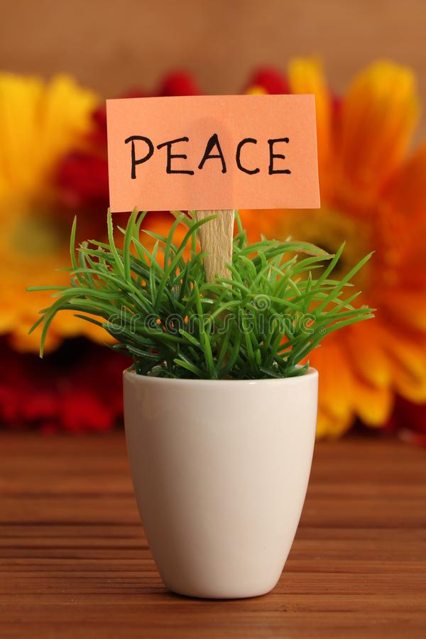 Peace. Beautiful shot of peace board stuck in planted pot royalty free stock photos