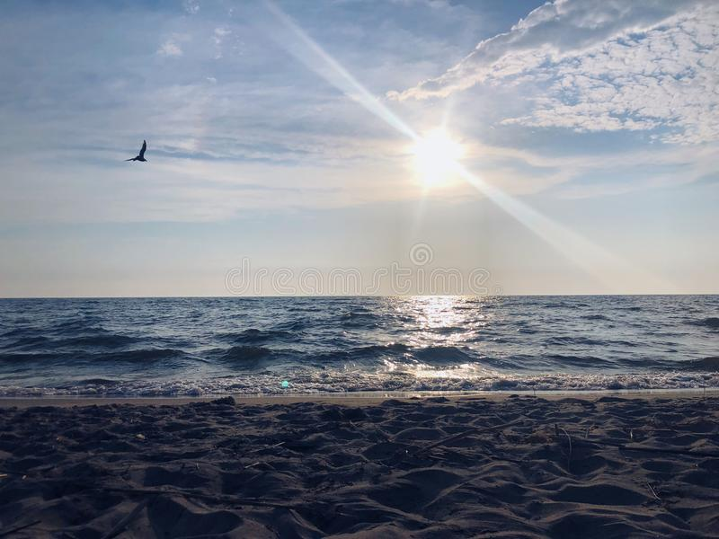 Beautiful shot of the sea with a bird flying and sunlight shining in the sky royalty free stock images