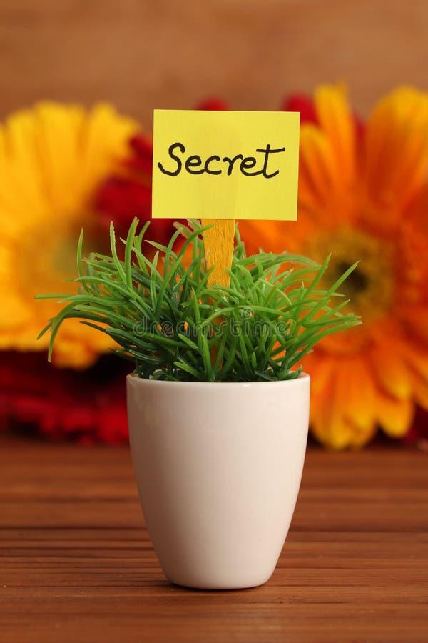 Secret stock photos