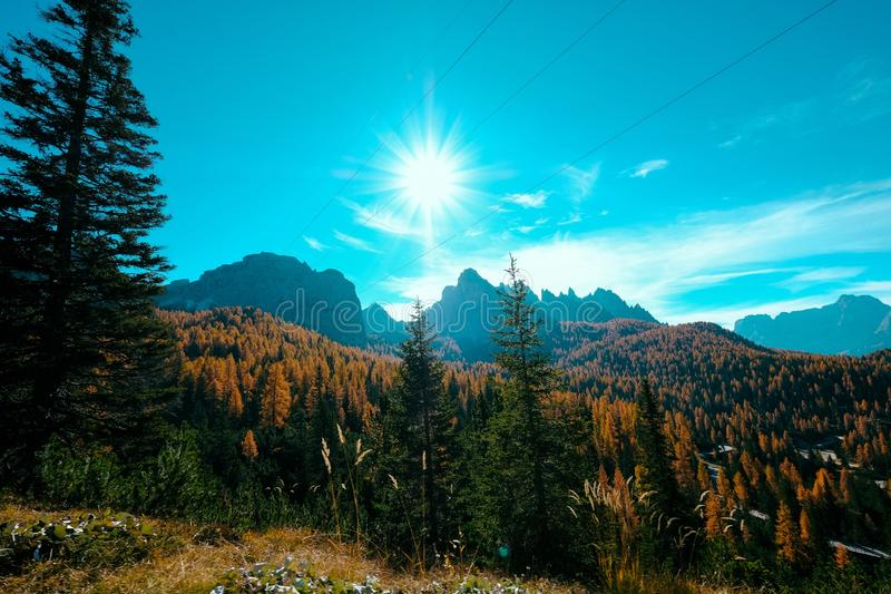 Beautiful shot of yellow and green trees and mountains in a distance with the sun shining in sky royalty free stock image