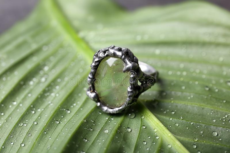 Beautiful silver ring with prehnite gemstone on leaf. Beautiful silver ring with prehnite gemstone on green leaf stock photos
