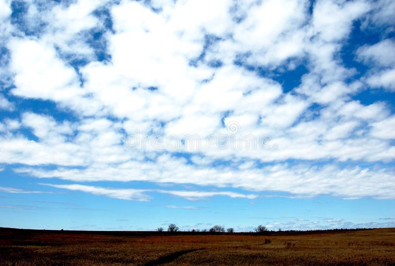 Beautiful Skies Over the Horizon. Puffy, cotton candy clouds in a blue sky. Big Sky in Montana over rural farmland. Trees in the distance at the horizon line royalty free stock images