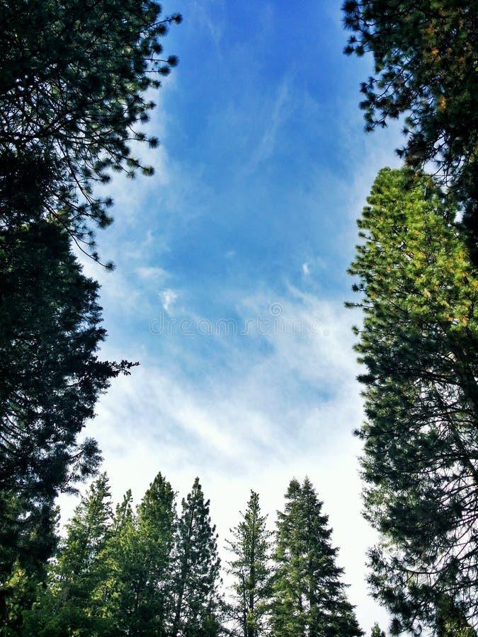 Beautiful skies. royalty free stock photos