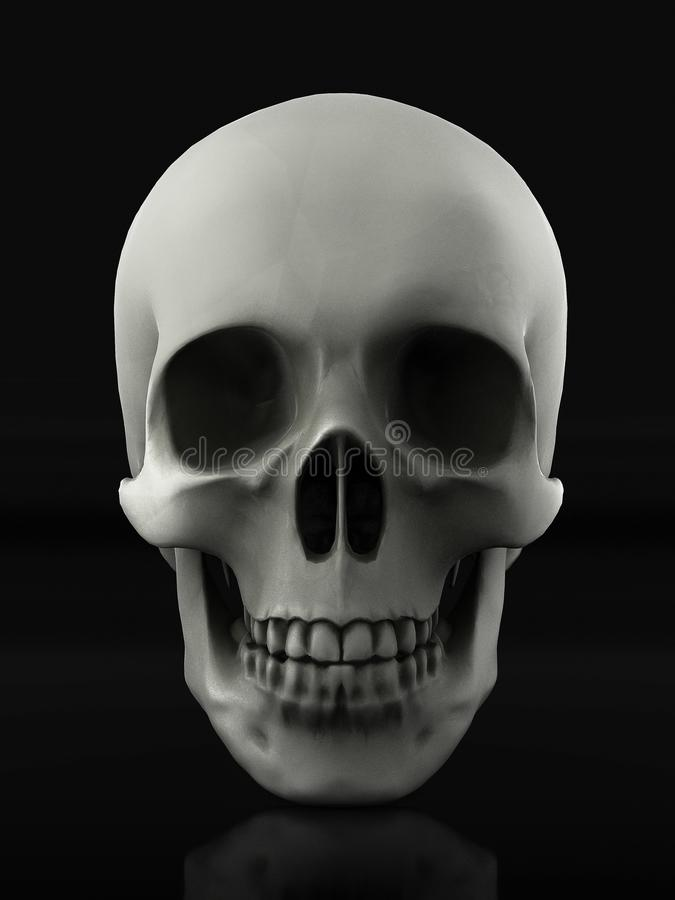 Beautiful skull made of textured metal royalty free illustration