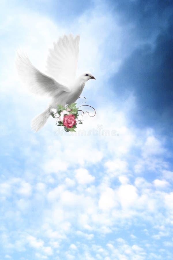 Download Beautiful Sky stock illustration. Illustration of rose - 33041247