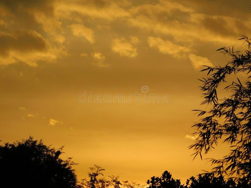 Beautiful sky at morning. Beautiful sky at, orange, golden, nature, background royalty free stock photo