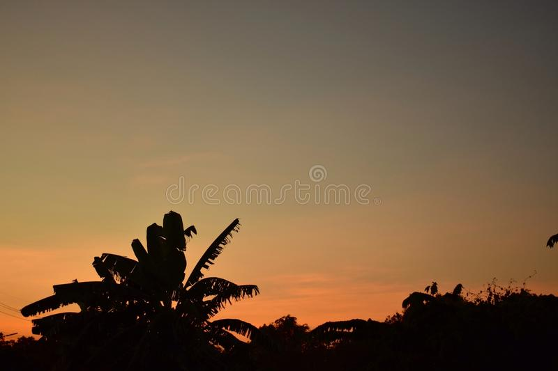 Beautiful sky. And silhouette sunset,background sky royalty free stock photo