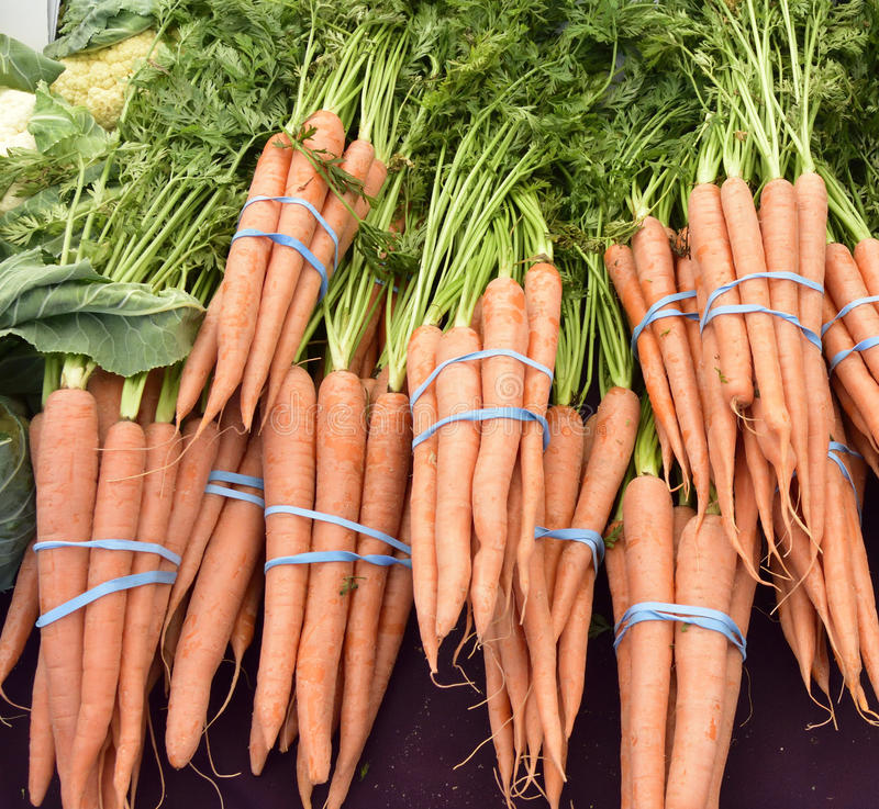 Beautiful slender carrots, at the local farmers market, no pesticides. Carrots, are a beautiful wholesome vegetable, full of vitamins and minerals. It is healthy stock photography