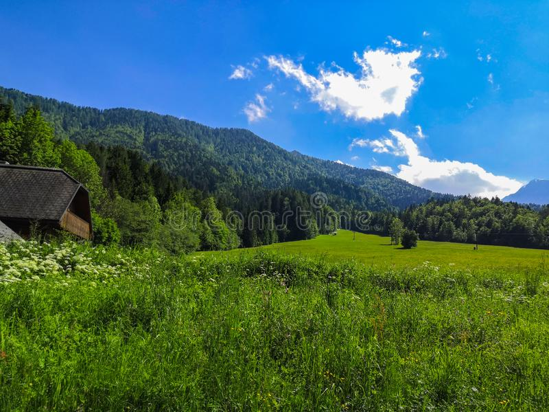 Beautiful Slovenian landscape of meadow and mountains in the Alps stock photos
