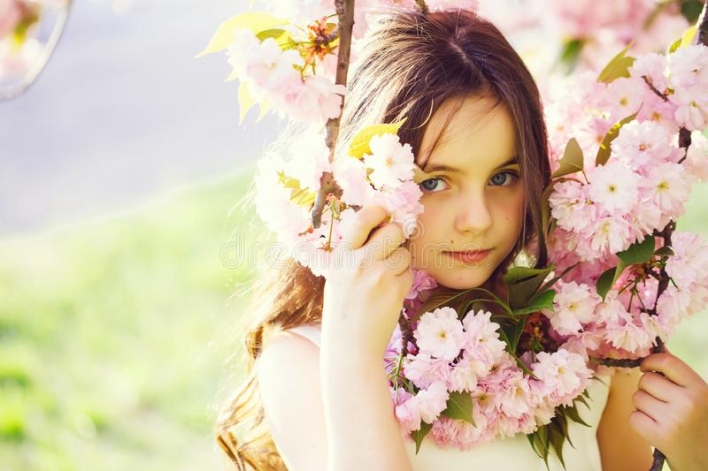 Small pretty girl in blossom royalty free stock images
