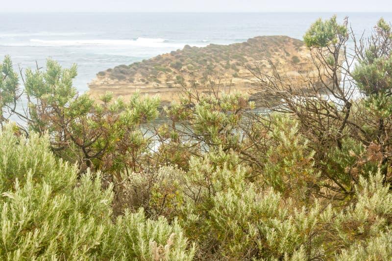 Beautiful small island near Great ocean road, Port Campbell National Park, Victoria, Australia royalty free stock photos