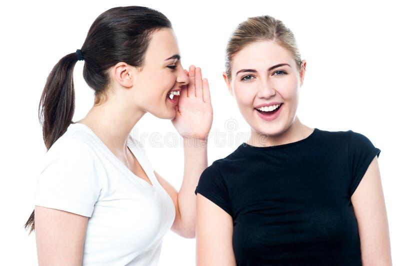 Beautiful smiling girls sharing a secret stock photography