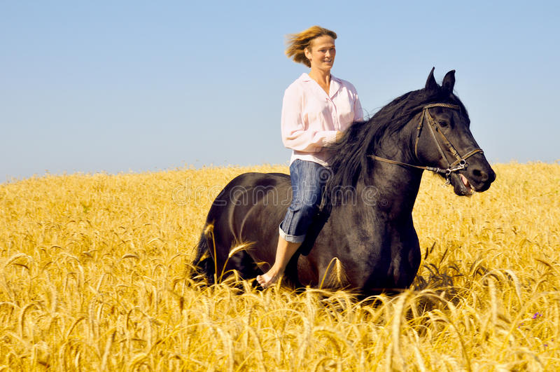 Beautiful smiling woman rides horse. Beautiful smiling woman rides a pretty horse in field royalty free stock images