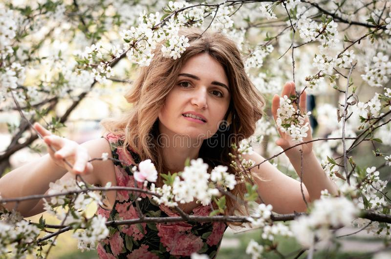 Beautiful smiling woman surrounded by blooming cherry flowers passing through tree branches and looking at camera royalty free stock photos