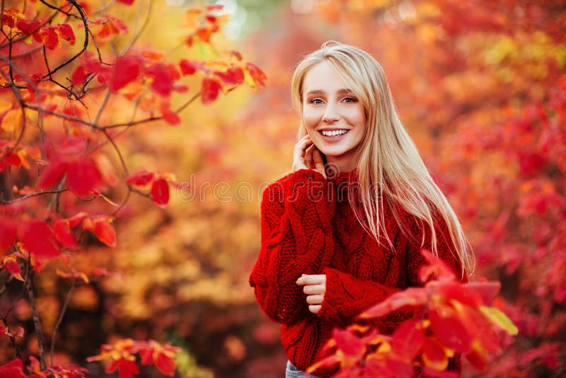 Beautiful smiling woman near red leaves outdoors stock photography
