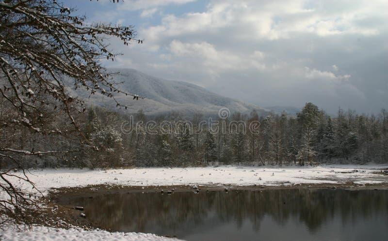 Beautiful Snow Scene stock images