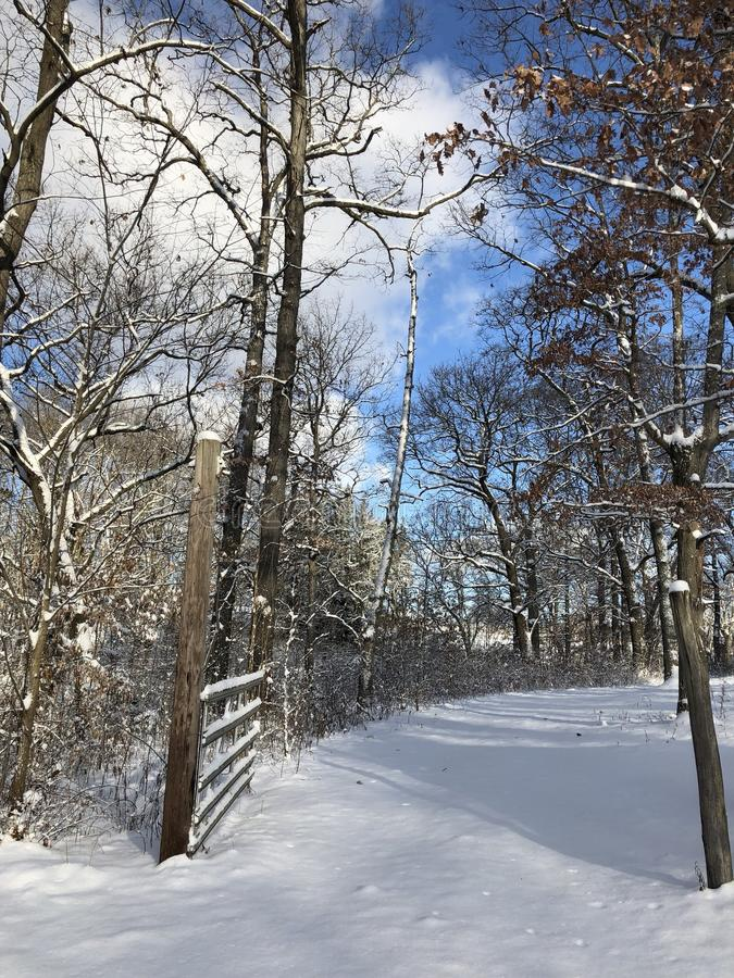 A beautiful snowy day royalty free stock photography