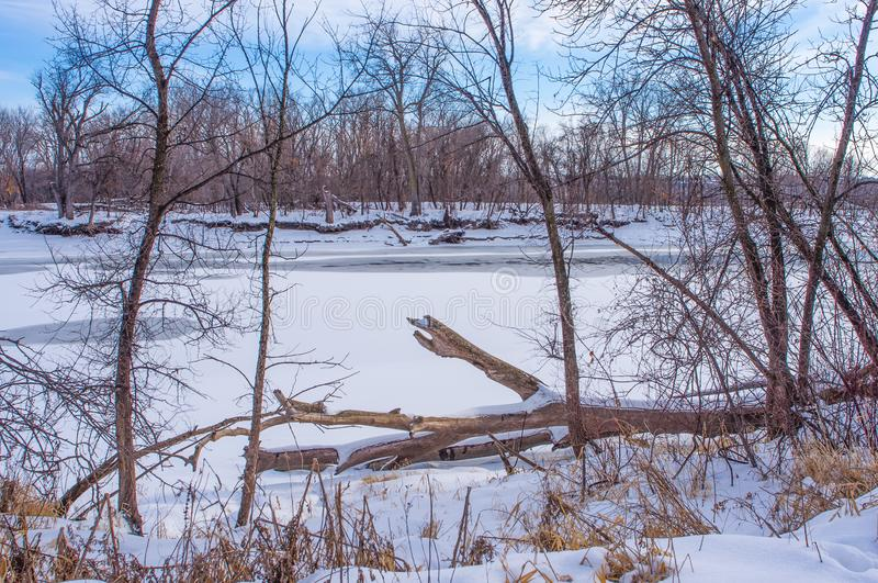 Beautiful snowy frozen winter river and forest - in the Minnesota Valley National Wildlife Area - sunny day with blue skies royalty free stock photography