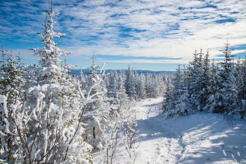 Beautiful snowy landscape in Quebec, Canada. Beautiful snowy landscape in the Quebec eastern townships region, Canada royalty free stock photography