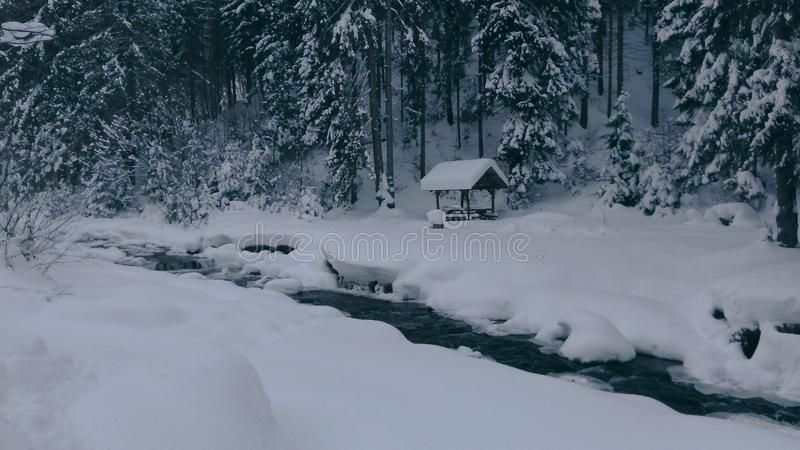 Beautiful snowy winter in the Carpathians royalty free stock photo