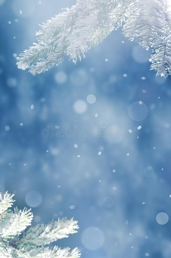 Beautiful snowy winter landscape with a snowy fir branch, snowflakes and blue sky. Winter christmas background. Winter concept royalty free stock photography
