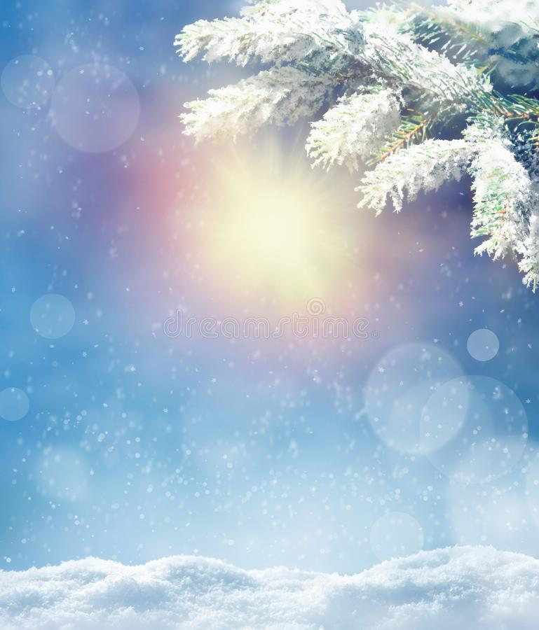 Beautiful snowy winter landscape with a snowy fir branch, snowflakes and blue sky. Winter christmas background. Winter concept royalty free stock photo