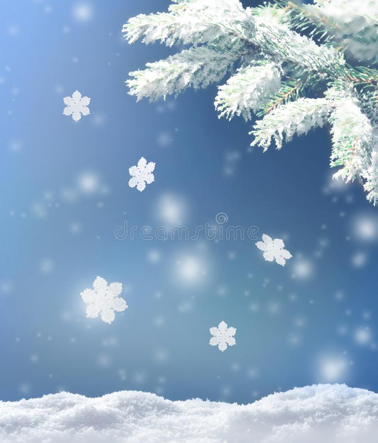Beautiful snowy winter landscape with a snowy fir branch, snowflakes and blue sky. Winter christmas background. Winter concept stock photography