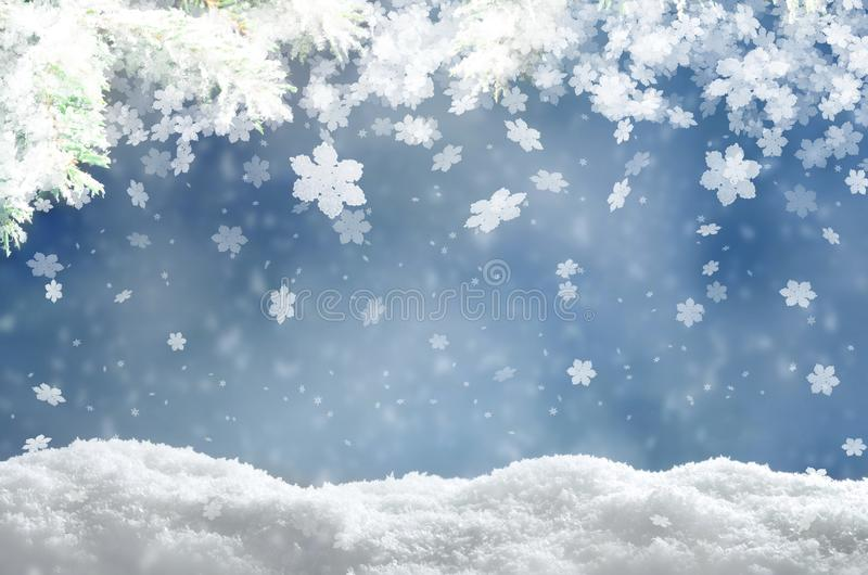 Beautiful snowy winter landscape with a snowy fir branch, snowflakes and blue sky. Winter christmas background. Winter concept royalty free stock images