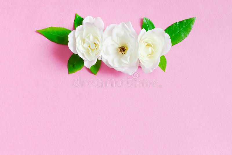 Soft background with arrangement of white roses flowers royalty free stock photography