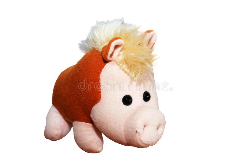 Beautiful soft boar stuffed toy on white background stock photos