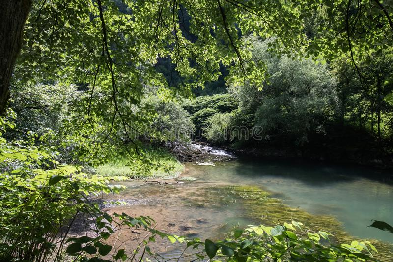 Beautiful source of ljubljanica in vrhnika, slovenia. In summertime stock photos