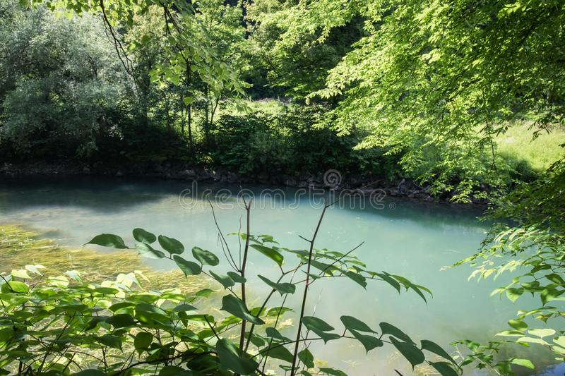 Beautiful source of ljubljanica in vrhnika, slovenia. In summertime royalty free stock photography