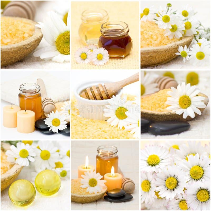 Beautiful Spa collage stock foto