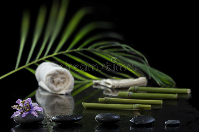 Beautiful spa composition with passiflora, bamboo and stones on black background. Beautiful spa composition with passiflora, bamboo and stones on black stock photography